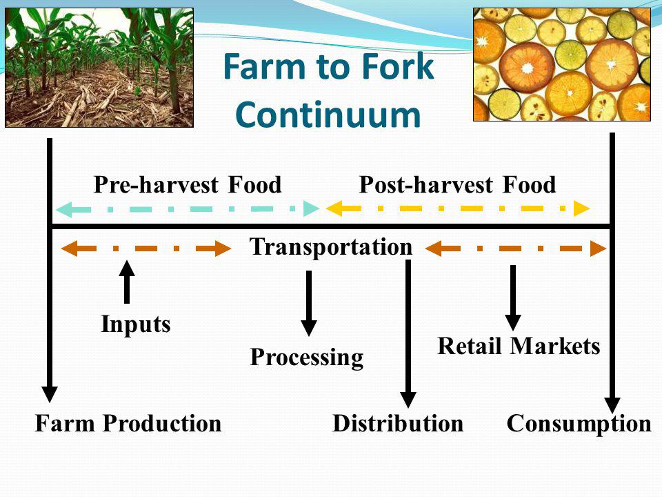 Farm to Fork Continuum Farm Production Pre-harvest FoodPost-harvest Food Consumption Retail Markets Distribution Inputs Processing Transportation