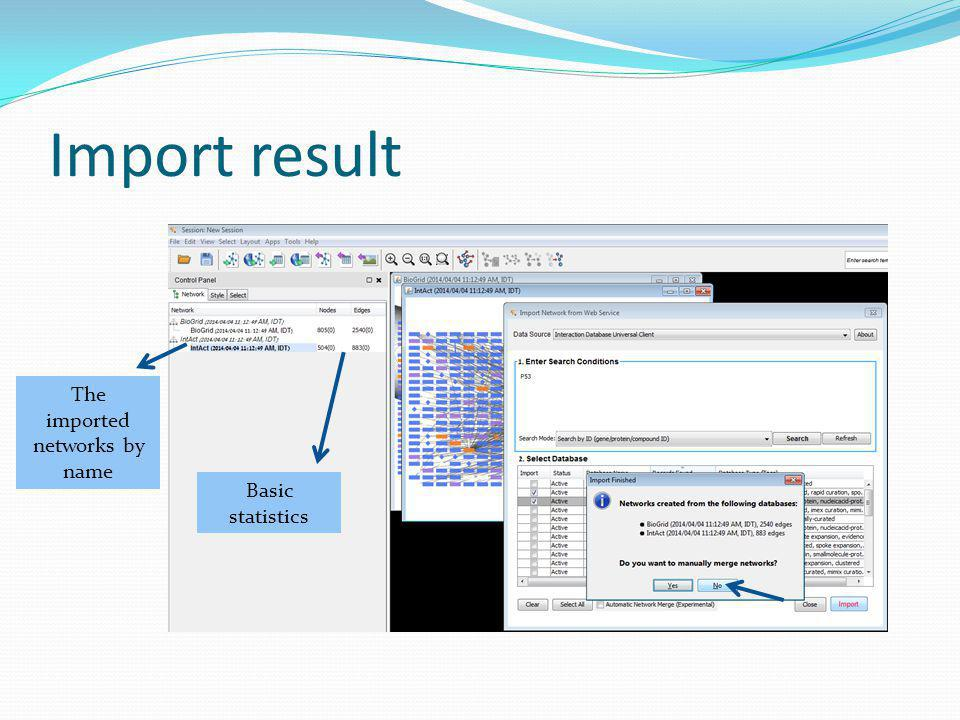 Import result The imported networks by name Basic statistics