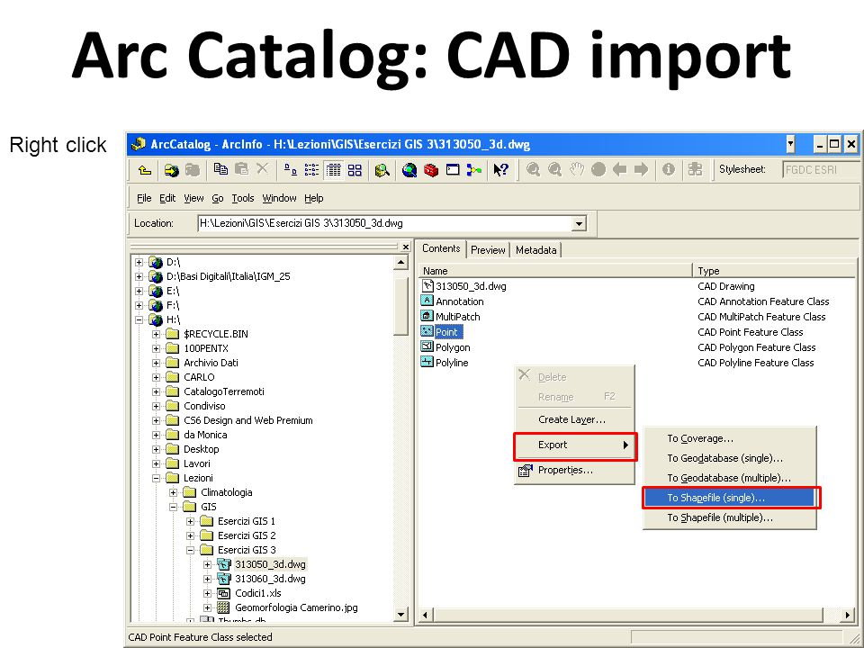 Arc Catalog: CAD import Feature Class To Shapefile Output location