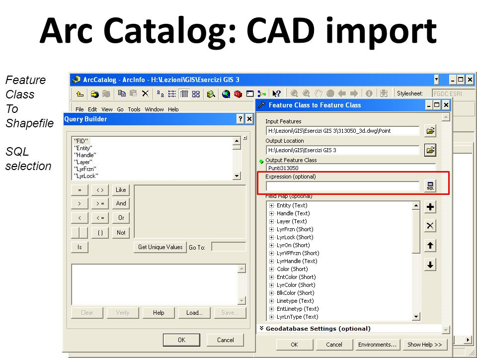 Arc Catalog: CAD import Feature Class To Shapefile Fields