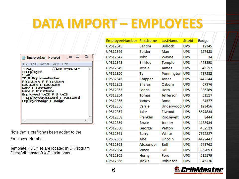 DATA IMPORT – ITEMS 7 Template RUL files are located in C:\Program Files\Cribmaster\9.X\Data\Imports