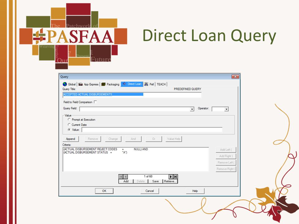 Direct Loan Query