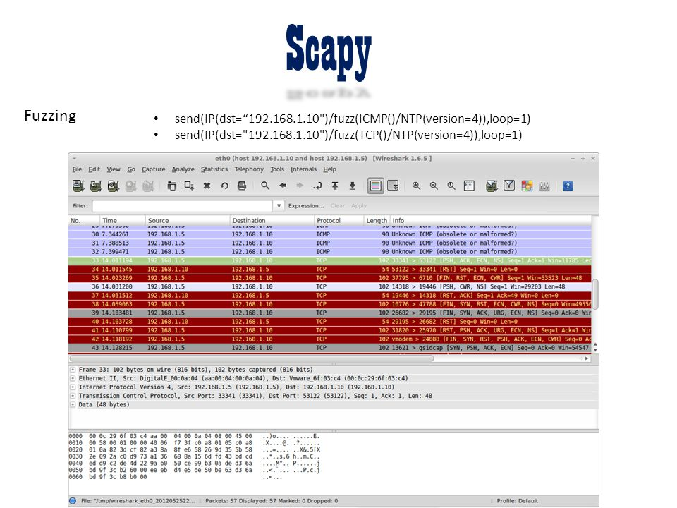 """Scapy Fuzzing send(IP(dst=""""192.168.1.10"""