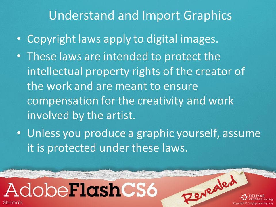 Copyright laws apply to digital images. These laws are intended to protect the intellectual property rights of the creator of the work and are meant t