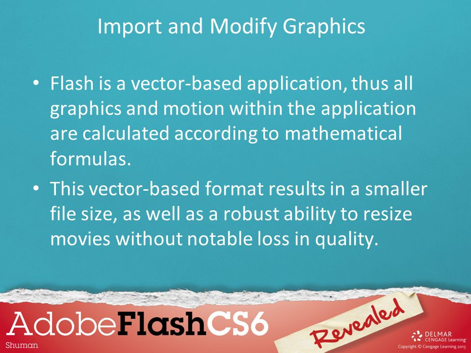 Flash is a vector-based application, thus all graphics and motion within the application are calculated according to mathematical formulas. This vecto