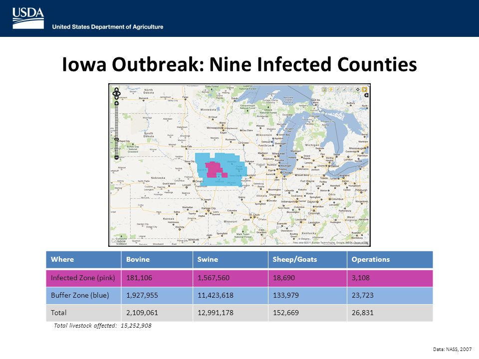19 Iowa Outbreak: Nine Infected Counties Data: NASS, 2007 WhereBovineSwineSheep/GoatsOperations Infected Zone (pink)181,1061,567,56018,6903,108 Buffer Zone (blue)1,927,95511,423,618133,97923,723 Total 2,109,06112,991,178152,66926,831 Total livestock affected: 15,252,908