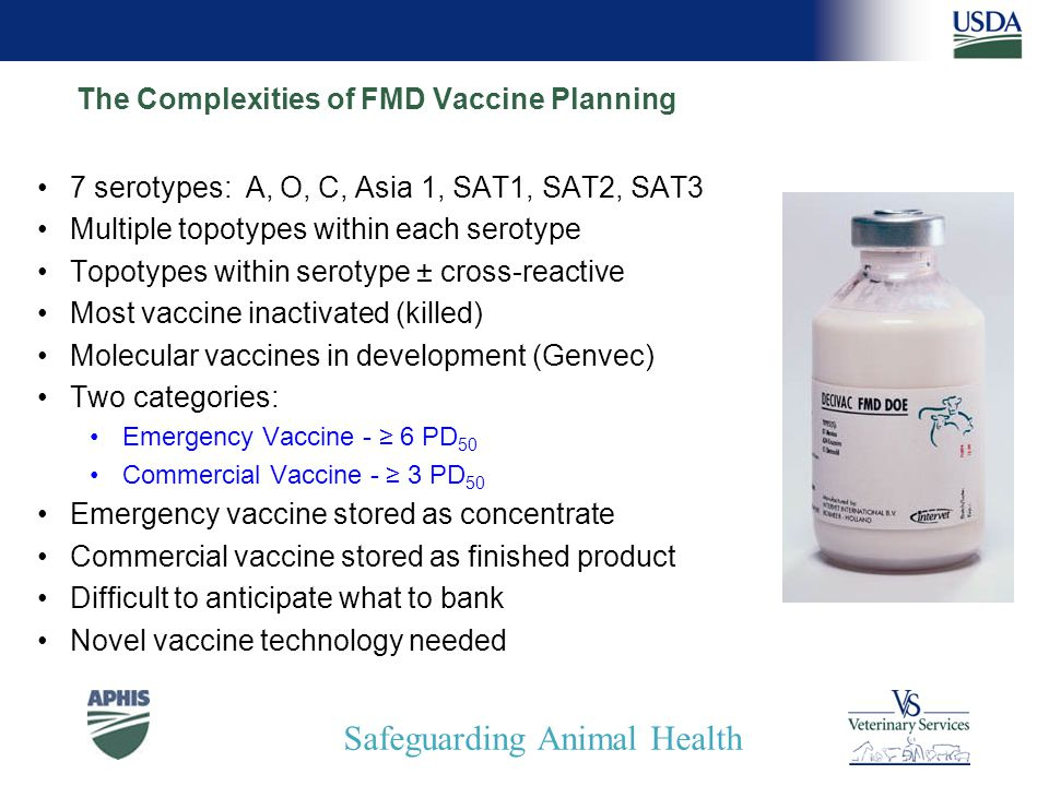 Safeguarding Animal Health The Complexities of FMD Vaccine Planning 7 serotypes: A, O, C, Asia 1, SAT1, SAT2, SAT3 Multiple topotypes within each serotype Topotypes within serotype ± cross-reactive Most vaccine inactivated (killed) Molecular vaccines in development (Genvec) Two categories: Emergency Vaccine - ≥ 6 PD 50 Commercial Vaccine - ≥ 3 PD 50 Emergency vaccine stored as concentrate Commercial vaccine stored as finished product Difficult to anticipate what to bank Novel vaccine technology needed