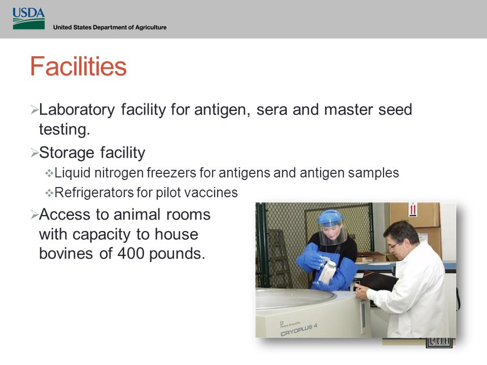 Facilities  Laboratory facility for antigen, sera and master seed testing.