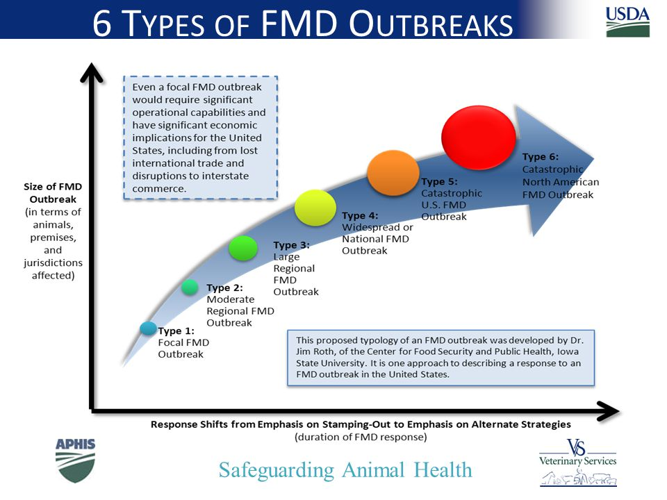 Safeguarding Animal Health 6 T YPES OF FMD O UTBREAKS