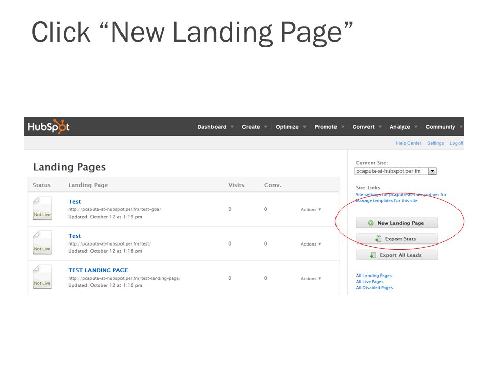 "Click ""New Landing Page"""