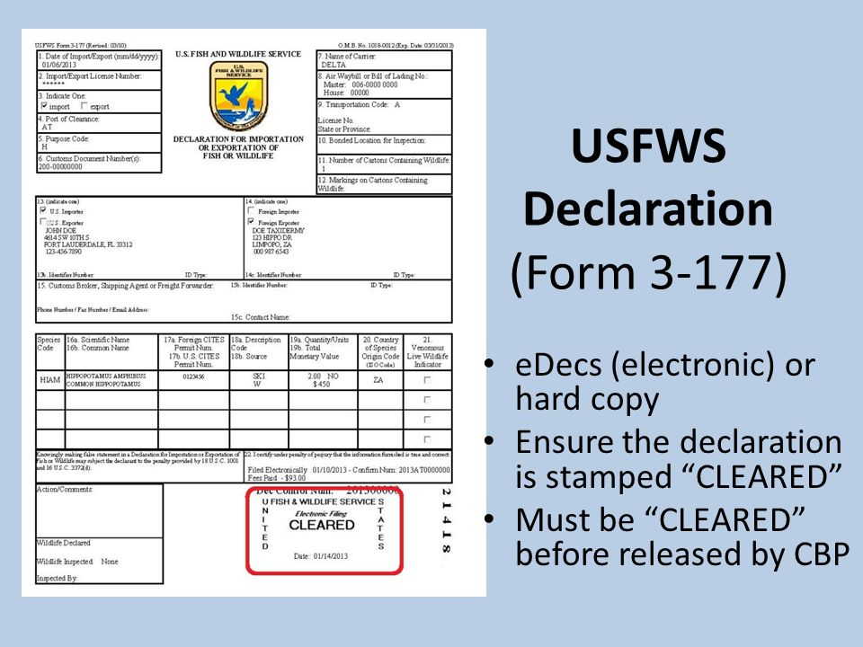 USFWS Declaration (Form 3-177) eDecs (electronic) or hard copy Ensure the declaration is stamped CLEARED Must be CLEARED before released by CBP