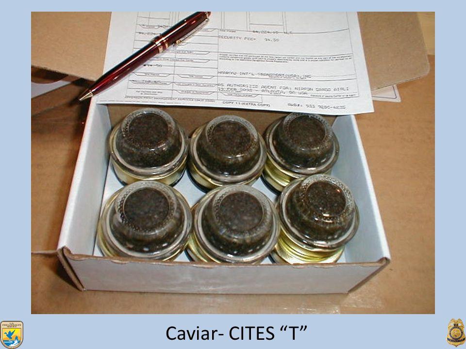 Caviar- CITES T