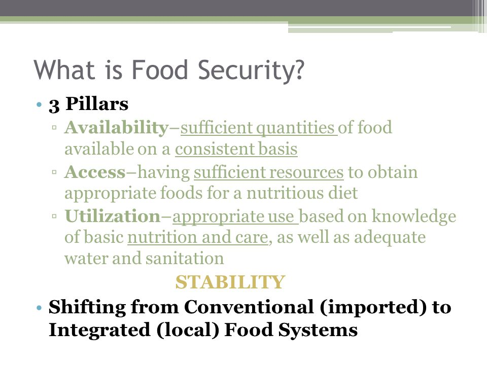 What is Food Security.