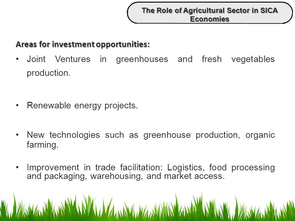 21 Areas for investment opportunities: Joint Ventures in greenhouses and fresh vegetables production. Renewable energy projects. New technologies such
