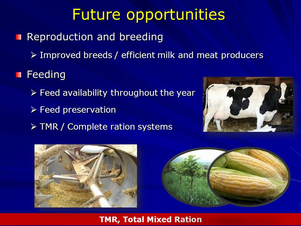 Future opportunities Reproduction and breeding  Improved breeds / efficient milk and meat producers Feeding  Feed availability throughout the year  Feed preservation  TMR / Complete ration systems TMR, Total Mixed Ration