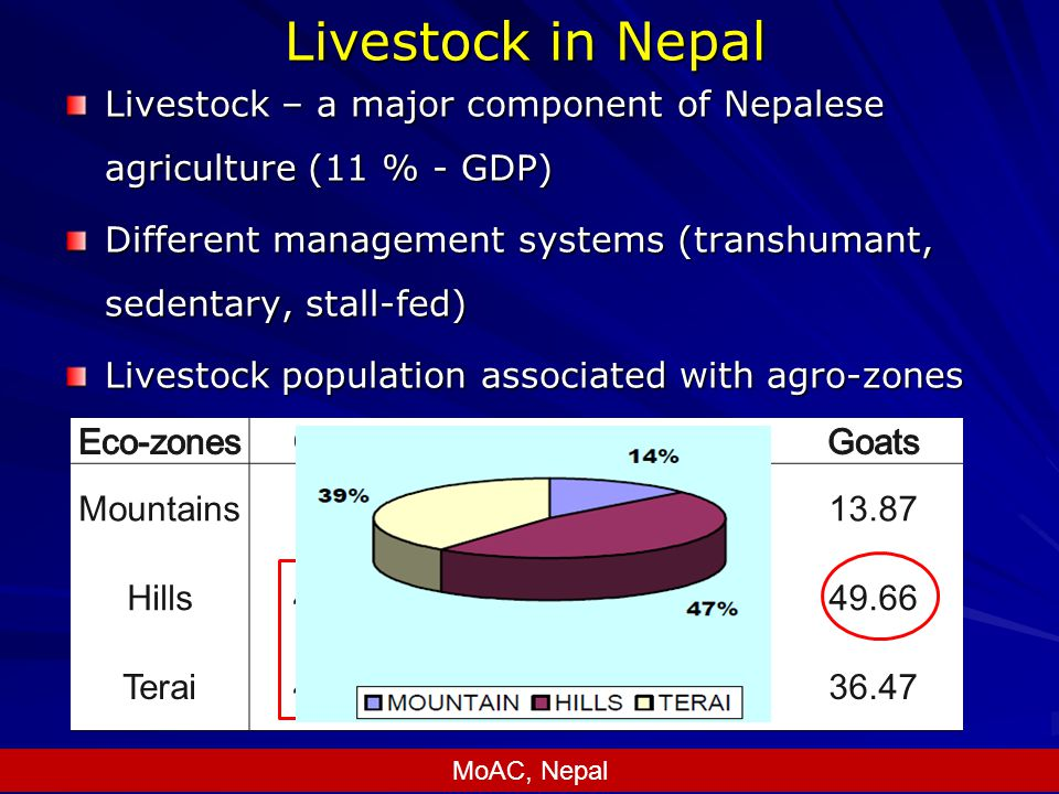 Livestock in Nepal Livestock – a major component of Nepalese agriculture (11 % - GDP) Different management systems (transhumant, sedentary, stall-fed) Livestock population associated with agro-zones Mountains12.468.7943.4213.87 Hills47.1652.5744.2149.66 Terai40.3838.6512.3836.47 MoAC, Nepal