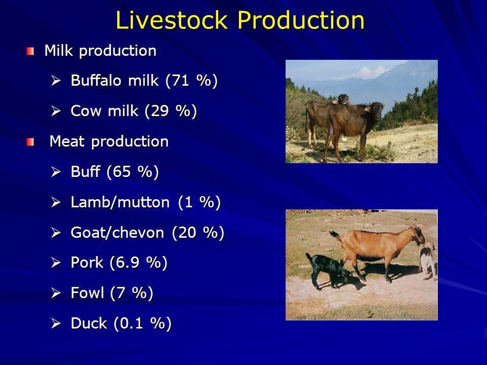 Livestock Production Milk production  Buffalo milk (71 %)  Cow milk (29 %) Meat production Meat production  Buff (65 %)  Lamb/mutton (1 %)  Goat/