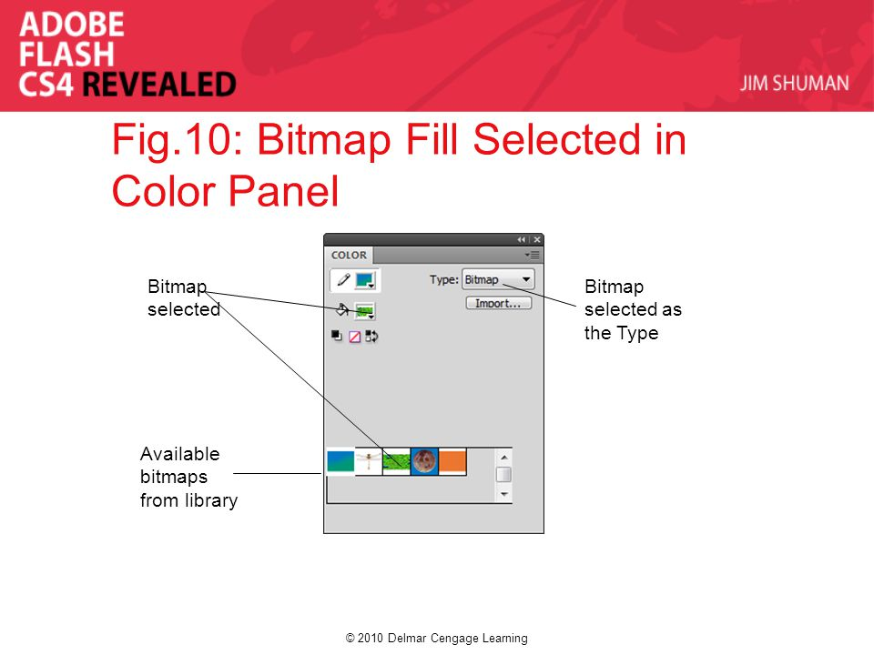 © 2010 Delmar Cengage Learning Fig.10: Bitmap Fill Selected in Color Panel Bitmap selected Bitmap selected as the Type Available bitmaps from library