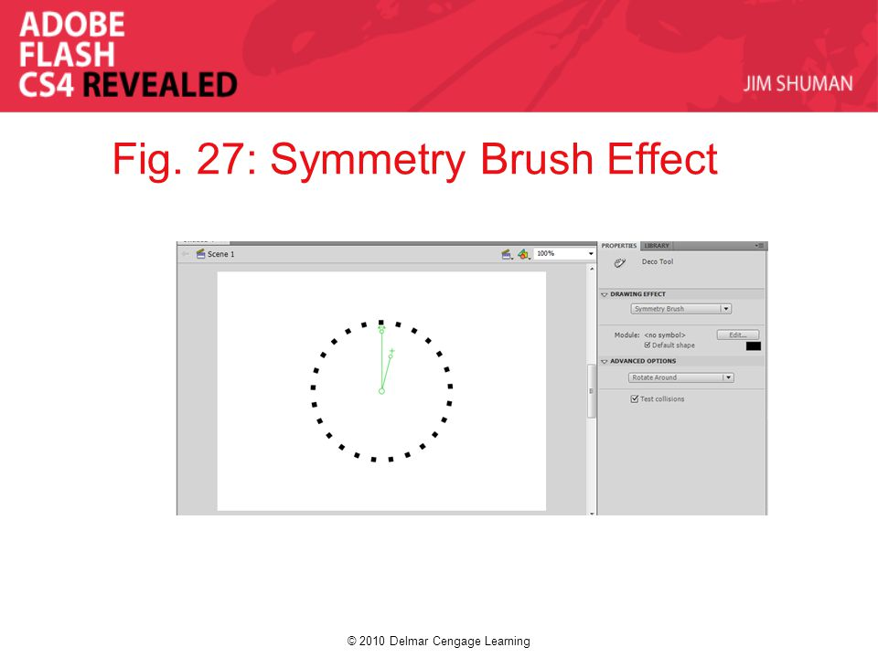 © 2010 Delmar Cengage Learning Fig. 27: Symmetry Brush Effect