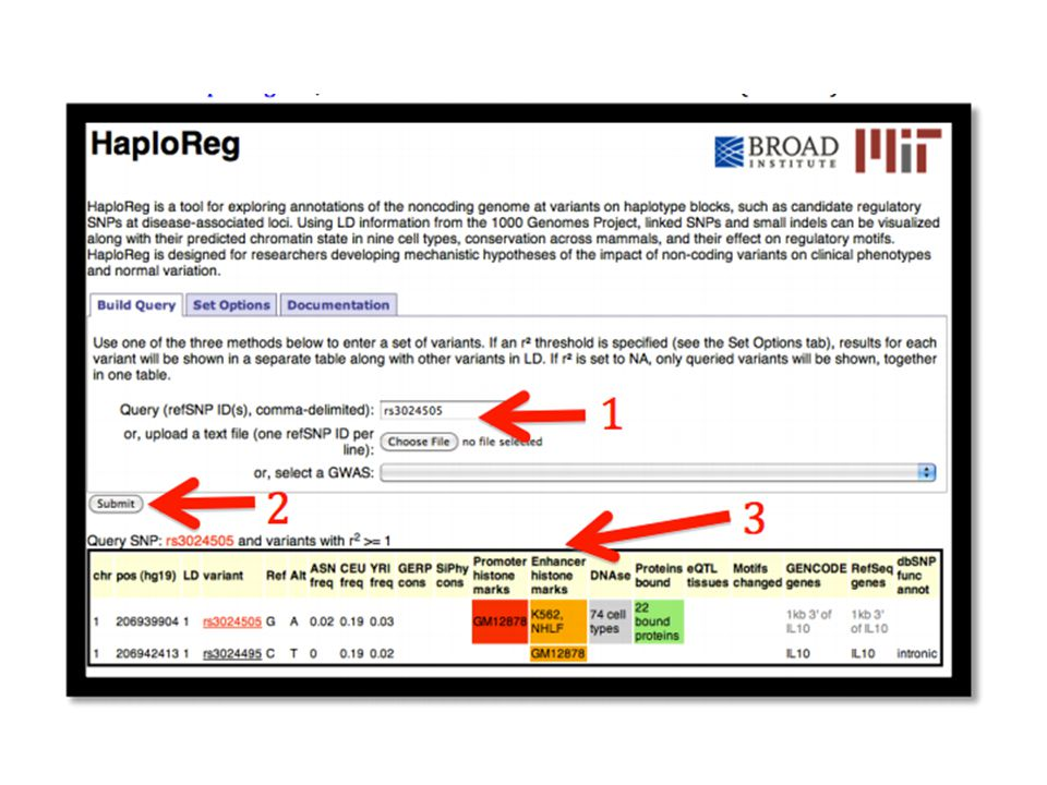 HaploReg retrieves the ENCODE annotation for the selected SNP, as well as other SNPs in LD Using the Set Options tab, the user can configure values such as the LD threshold and the population used from 1000 Genomes data used to calculate LD