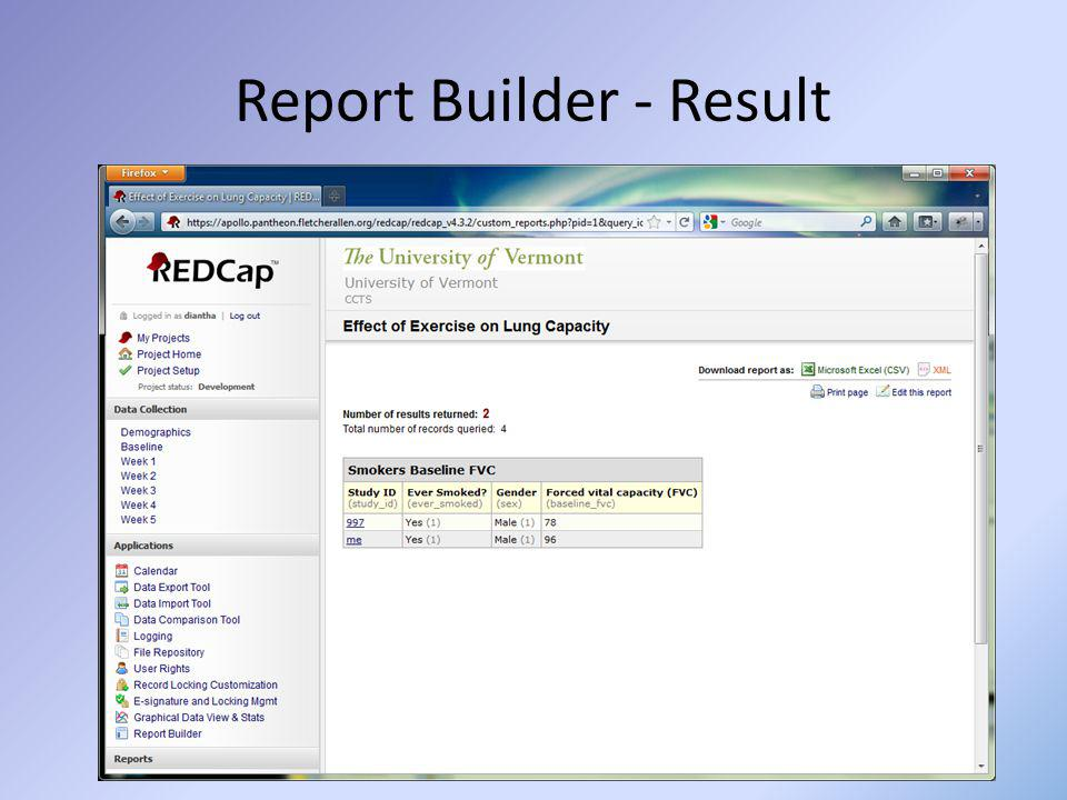 Report Builder - Result