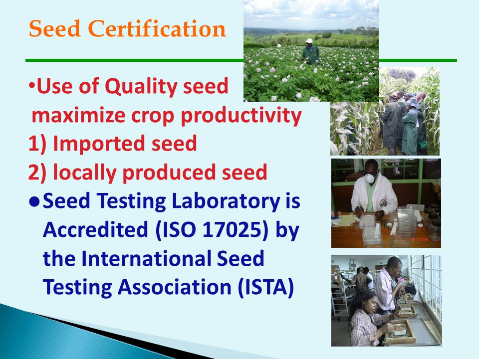 Seed Certification Use of Quality seed maximize crop productivity 1) Imported seed 2) locally produced seed l Seed Testing Laboratory is Accredited (I