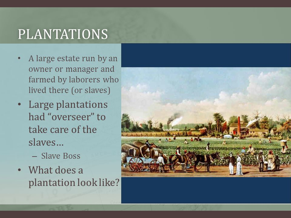 PLANTATIONS A large estate run by an owner or manager and farmed by laborers who lived there (or slaves) Large plantations had overseer to take care of the slaves… – Slave Boss What does a plantation look like