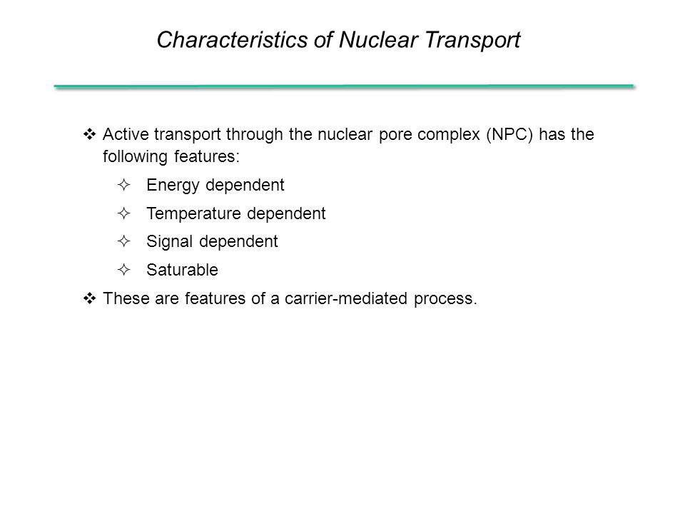 Characteristics of Nuclear Transport  Active transport through the nuclear pore complex (NPC) has the following features:  Energy dependent  Temperature dependent  Signal dependent  Saturable  These are features of a carrier-mediated process.