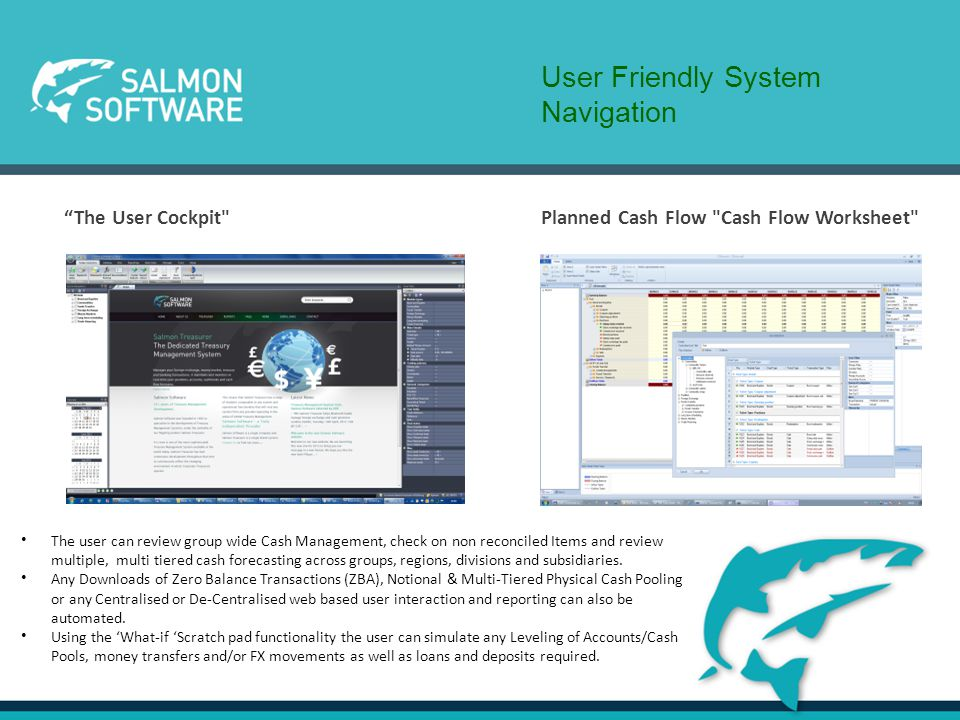 Automated Account Statement Upload Cash Pooling made easy Scratch Pad – Simple management of accounts Cash Sheet – Build a group wide overview Liquidity Planning – Forecast/Actual/Budget comparisons Function examples System walk throughs