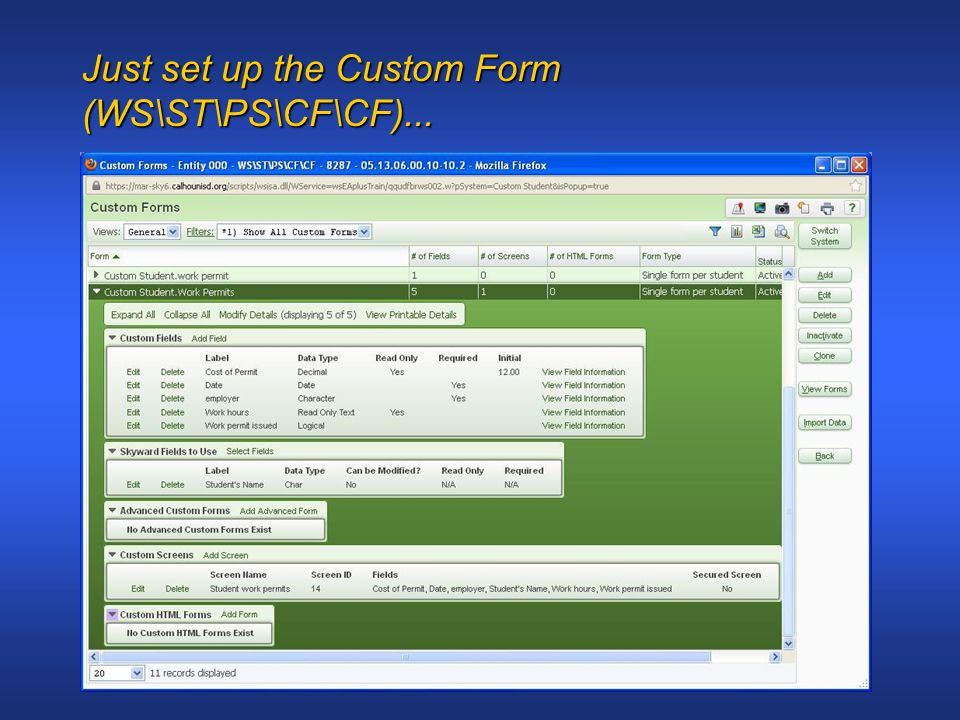 Just set up the Custom Form (WS\ST\PS\CF\CF)...