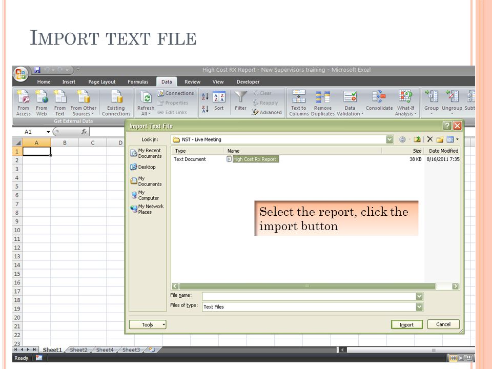 I MPORT TEXT FILE Select the report, click the import button