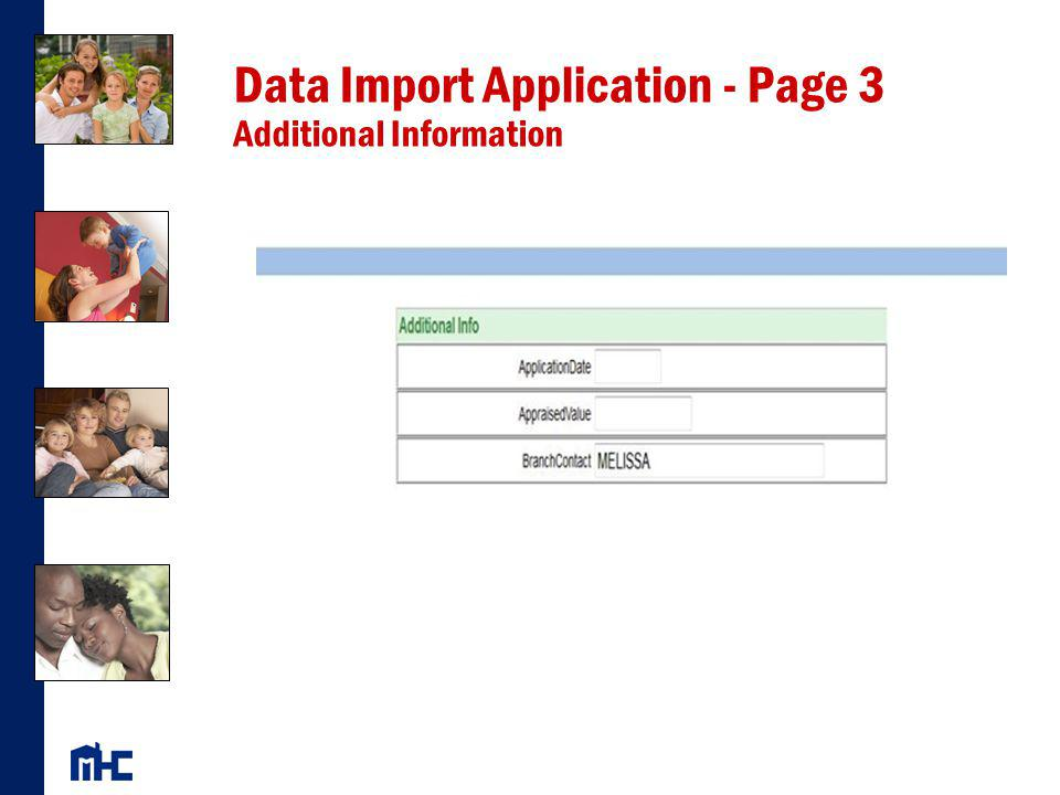 Data Import Application - Page 3 Additional Information