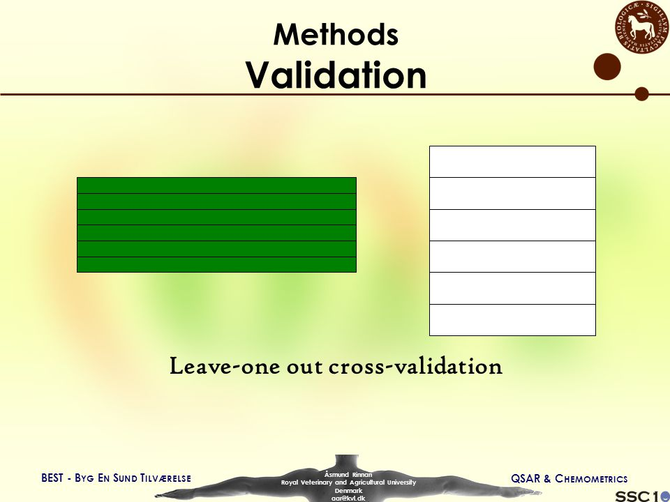 BEST - B YG E N S UND T ILVÆRELSE QSAR & C HEMOMETRICS Åsmund Rinnan Royal Veterinary and Agricultural University Denmark aar@kvl.dk Methods Validation Leave-one out cross-validation