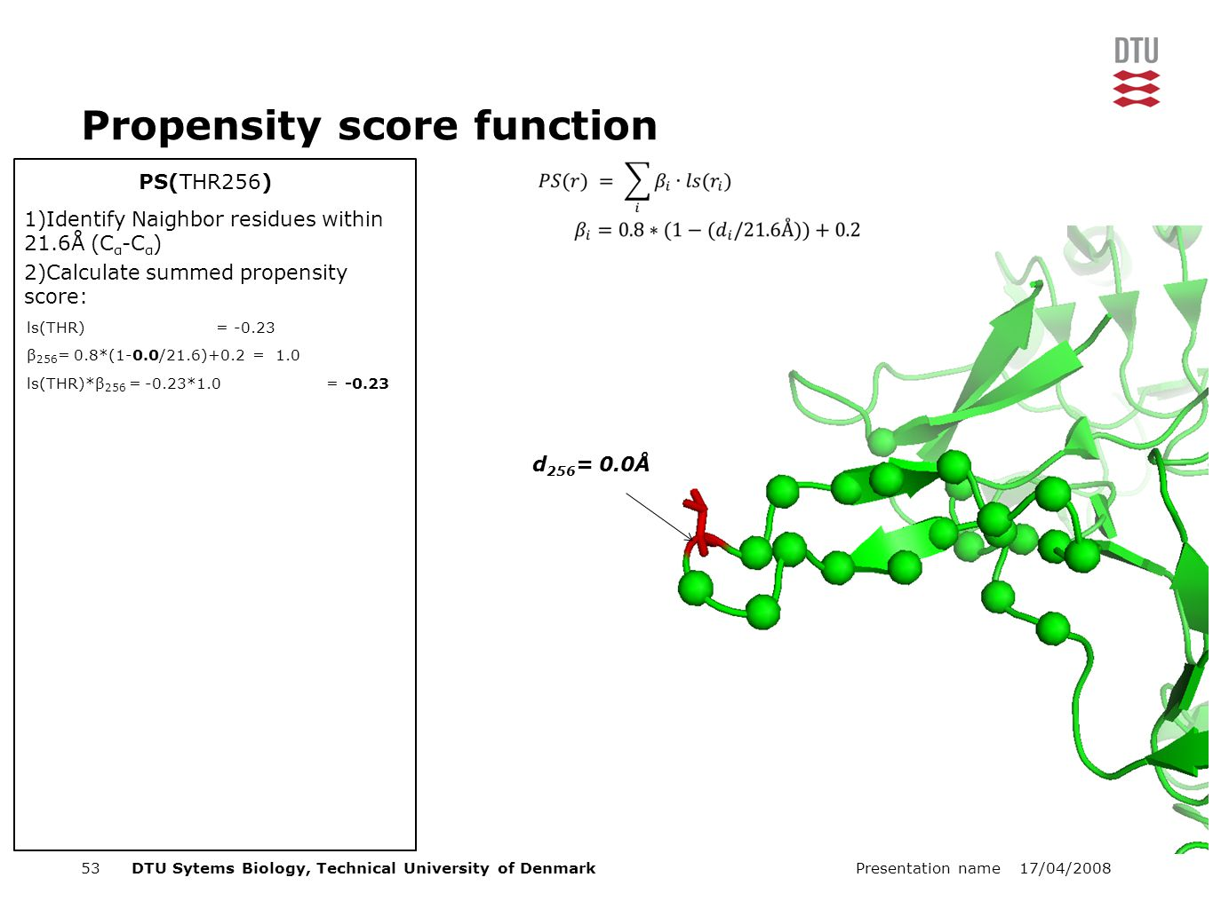 17/04/2008Presentation name53DTU Sytems Biology, Technical University of Denmark PS(THR256) Propensity score function 1)Identify Naighbor residues within 21.6Å (C α -C α ) 2)Calculate summed propensity score: ls(THR) = -0.23 β 256 = 0.8*(1-0.0/21.6)+0.2 = 1.0 ls(THR)*β 256 = -0.23*1.0 = -0.23 d 256 = 0.0Å