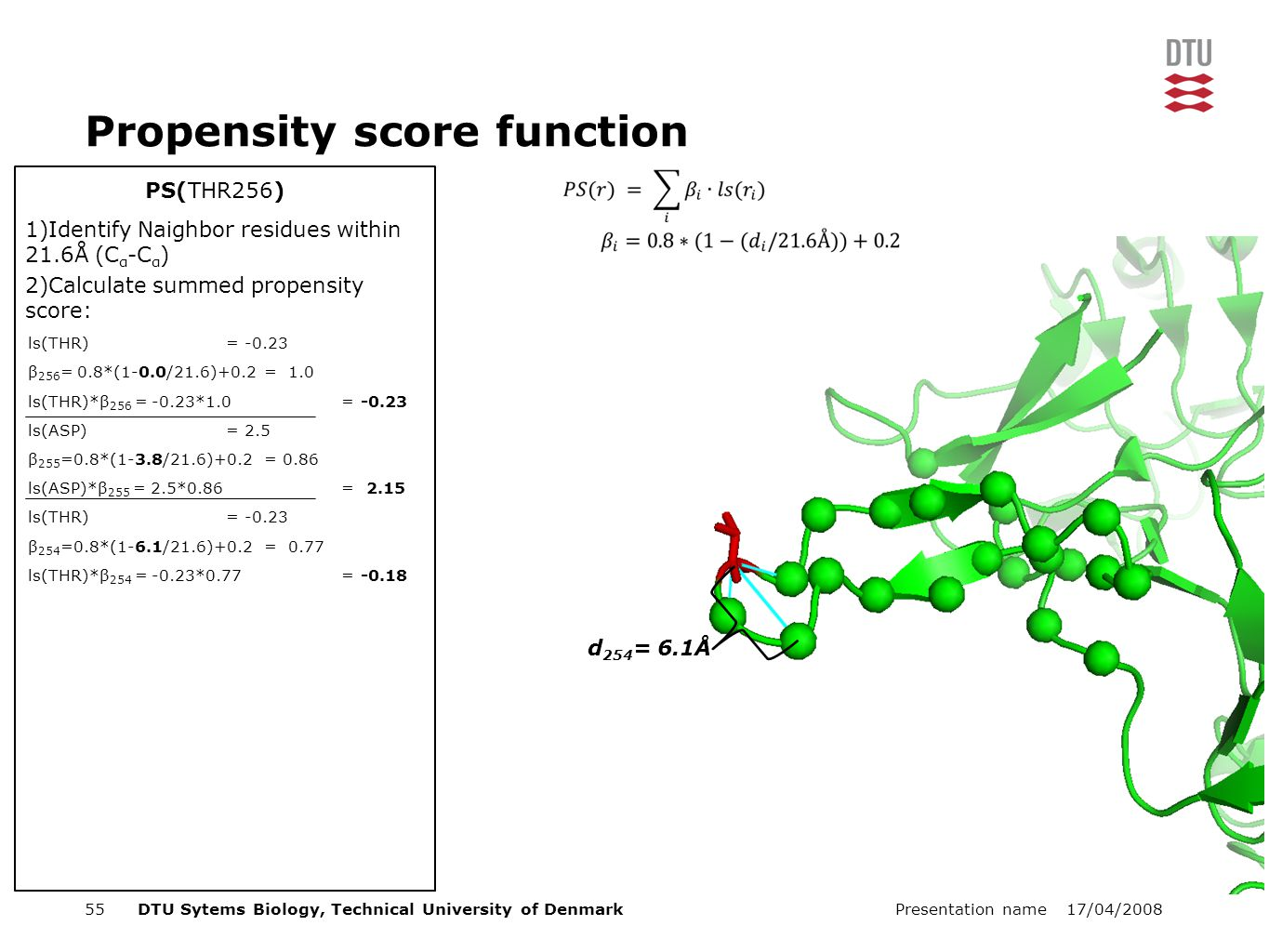 17/04/2008Presentation name55DTU Sytems Biology, Technical University of Denmark PS(THR256) Propensity score function 1)Identify Naighbor residues within 21.6Å (C α -C α ) 2)Calculate summed propensity score: ls(THR) = -0.23 β 256 = 0.8*(1-0.0/21.6)+0.2 = 1.0 ls(THR)*β 256 = -0.23*1.0 = -0.23 ls(ASP) = 2.5 β 255 =0.8*(1-3.8/21.6)+0.2 = 0.86 ls(ASP)*β 255 = 2.5*0.86 = 2.15 ls(THR) = -0.23 β 254 =0.8*(1-6.1/21.6)+0.2 = 0.77 ls(THR)*β 254 = -0.23*0.77 = -0.18 d 254 = 6.1Å