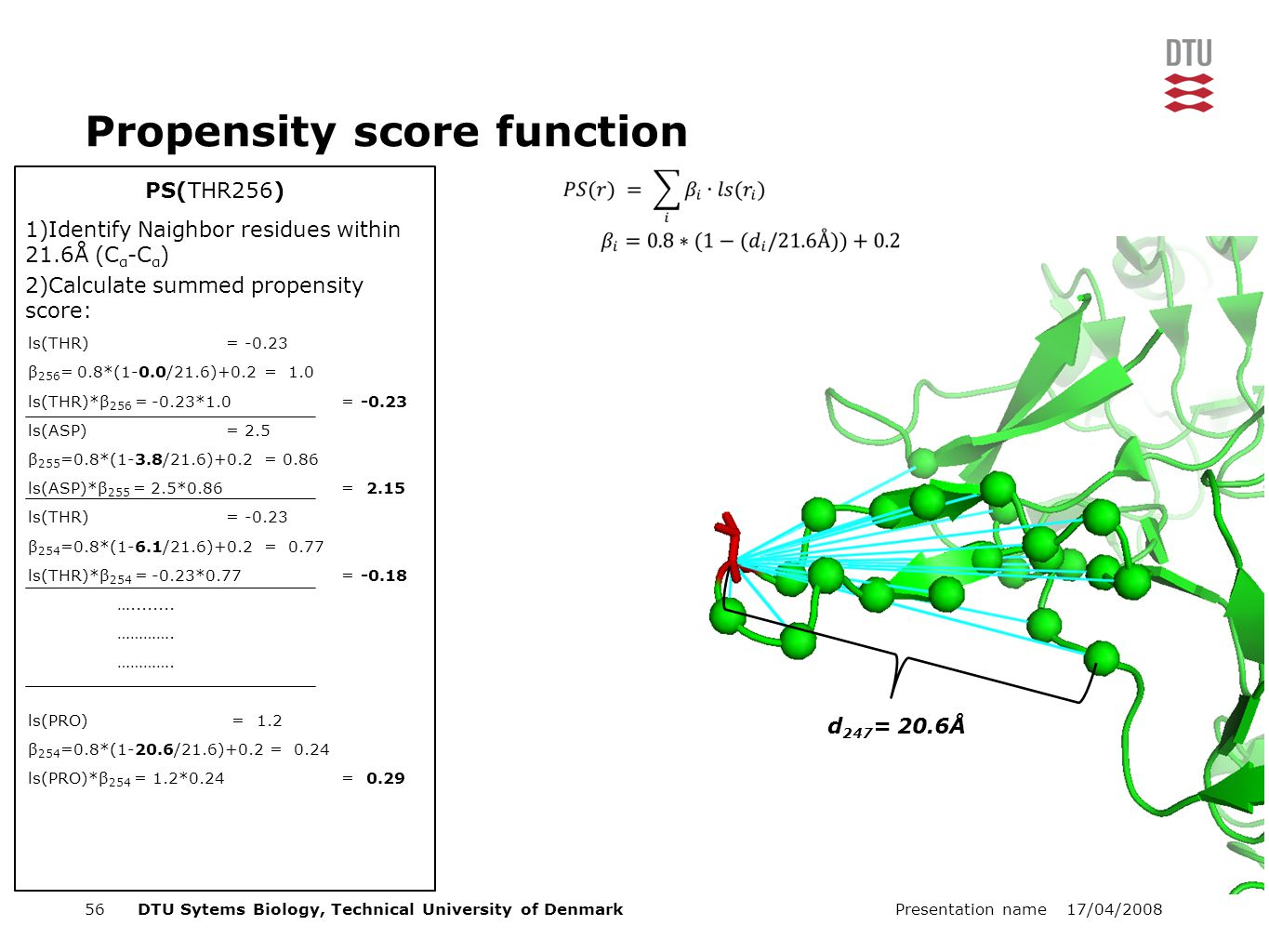 17/04/2008Presentation name56DTU Sytems Biology, Technical University of Denmark PS(THR256) Propensity score function 1)Identify Naighbor residues within 21.6Å (C α -C α ) 2)Calculate summed propensity score: ls(THR) = -0.23 β 256 = 0.8*(1-0.0/21.6)+0.2 = 1.0 ls(THR)*β 256 = -0.23*1.0 = -0.23 ls(ASP) = 2.5 β 255 =0.8*(1-3.8/21.6)+0.2 = 0.86 ls(ASP)*β 255 = 2.5*0.86 = 2.15 ls(THR) = -0.23 β 254 =0.8*(1-6.1/21.6)+0.2 = 0.77 ls(THR)*β 254 = -0.23*0.77 = -0.18 …........