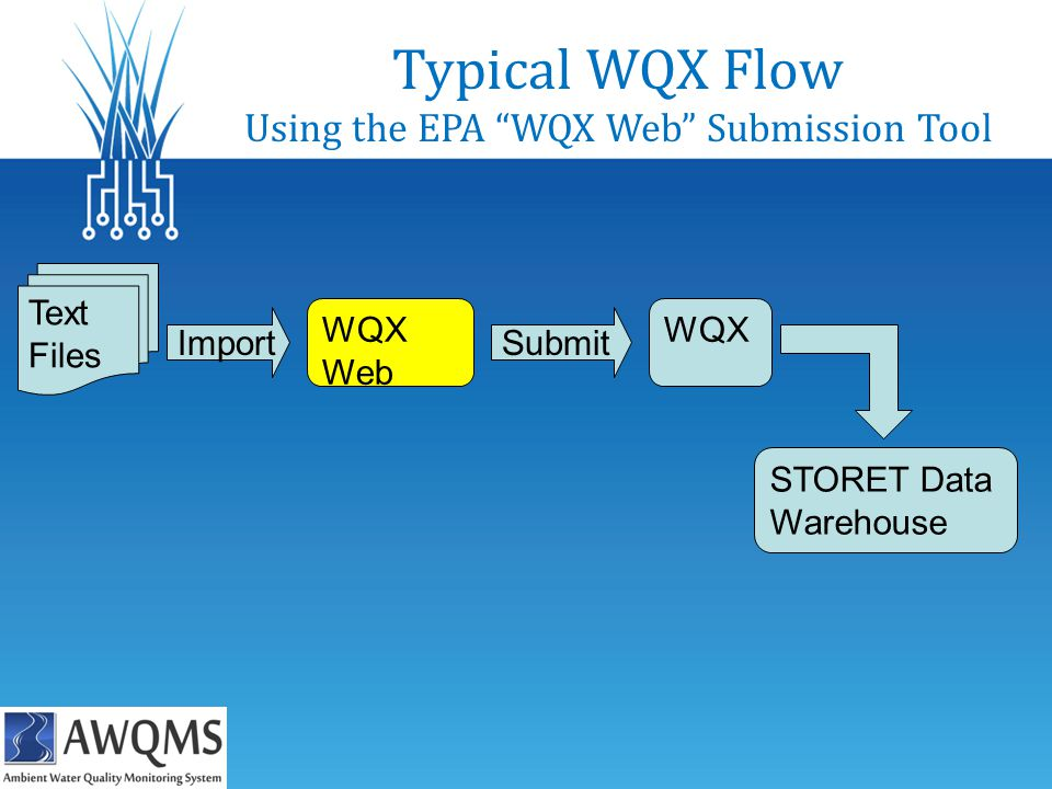 Typical WQX Flow Using the EPA WQX Web Submission Tool Import Text Files WQX Web Submit WQX STORET Data Warehouse