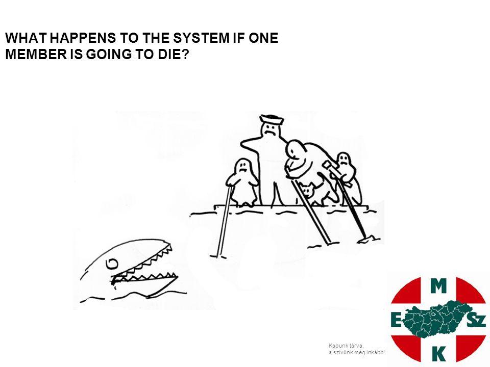 Kapunk tárva, a szívünk még inkább! HOW TO THE SYSTEM SURVIVE IN THIS NEW SITUATION?