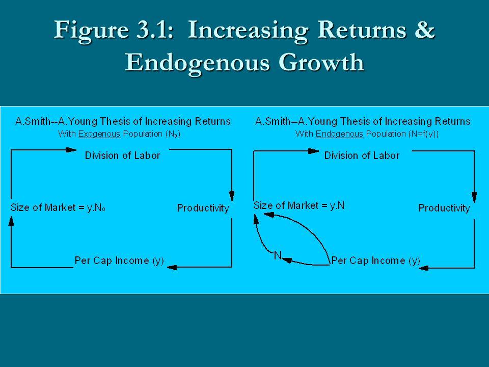 Figure 3.1: Increasing Returns & Endogenous Growth