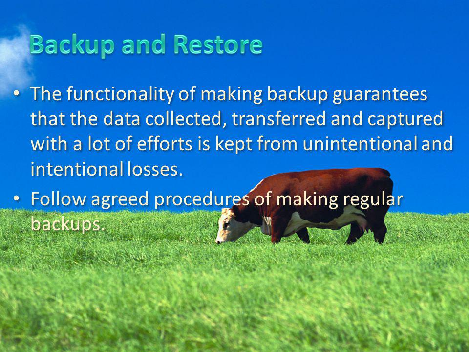 The functionality of making backup guarantees that the data collected, transferred and captured with a lot of efforts is kept from unintentional and intentional losses.