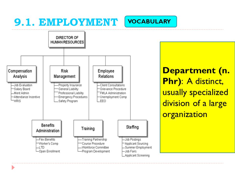 9.1. EMPLOYMENT Department (n. Phr): A distinct, usually specialized division of a large organization VOCABULARY