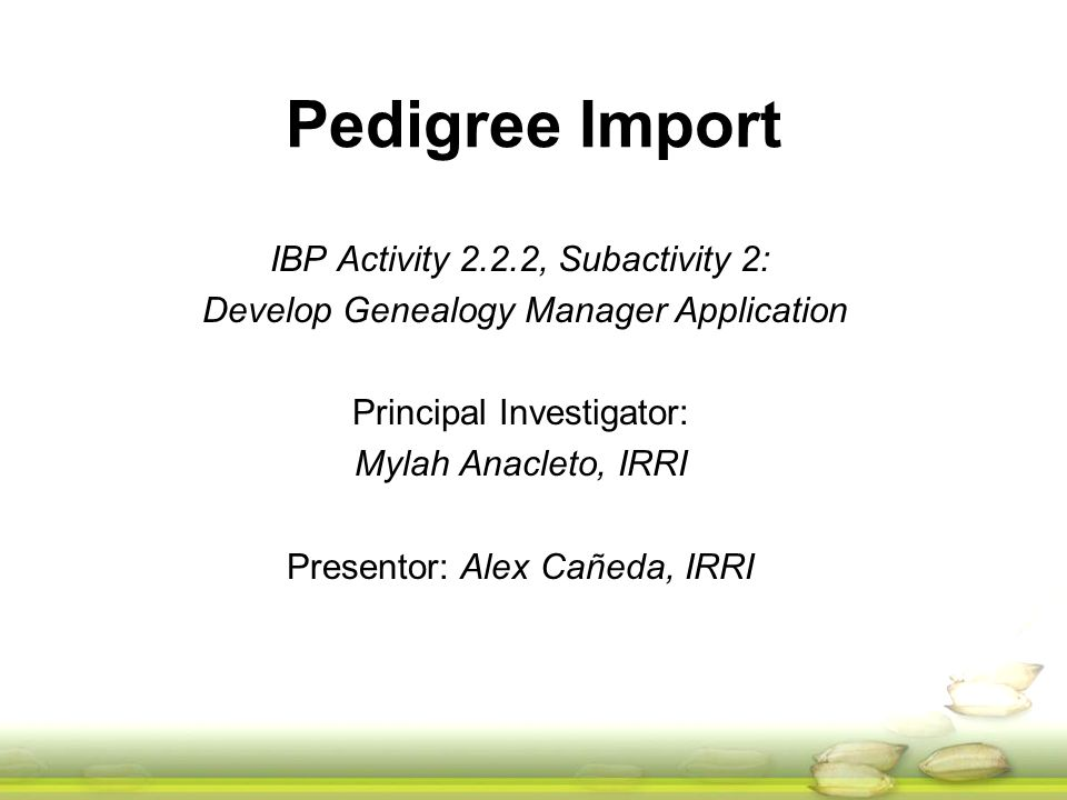 Pedigree Import IBP Activity 2.2.2, Subactivity 2: Develop Genealogy Manager Application Principal Investigator: Mylah Anacleto, IRRI Presentor: Alex Cañeda, IRRI