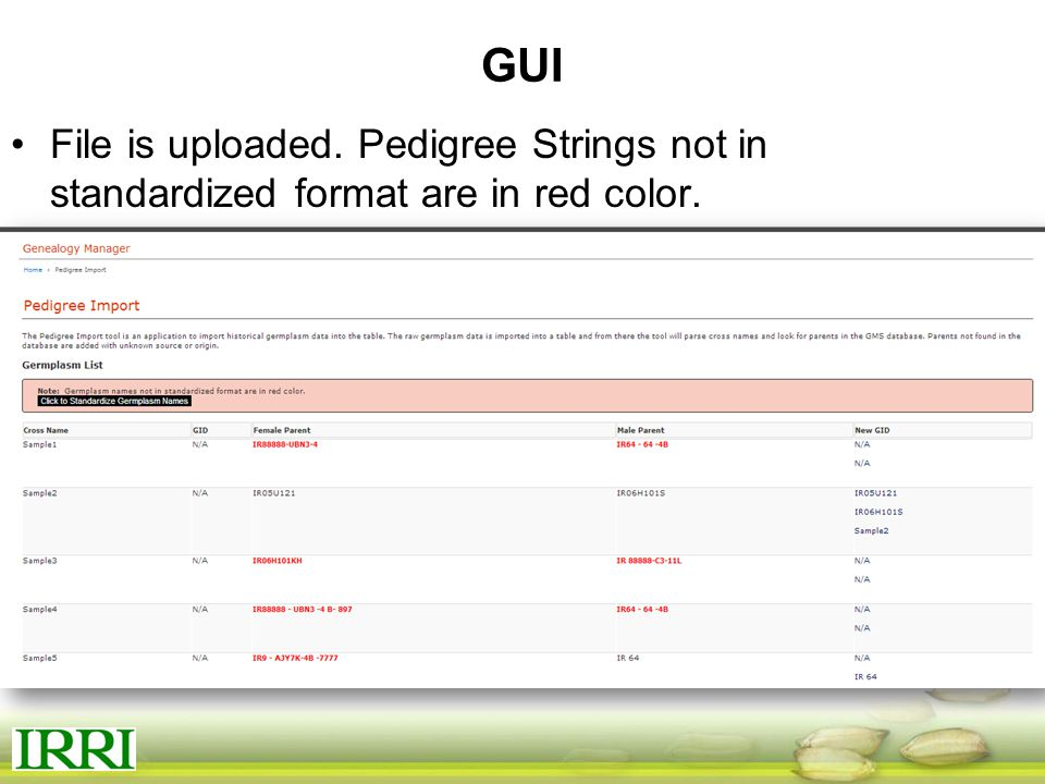 GUI File is uploaded. Pedigree Strings not in standardized format are in red color.