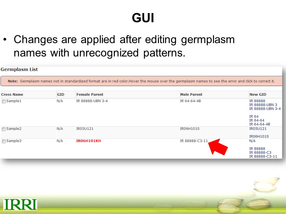 GUI Changes are applied after editing germplasm names with unrecognized patterns.