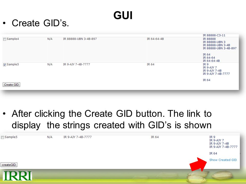 GUI Create GID's. After clicking the Create GID button.