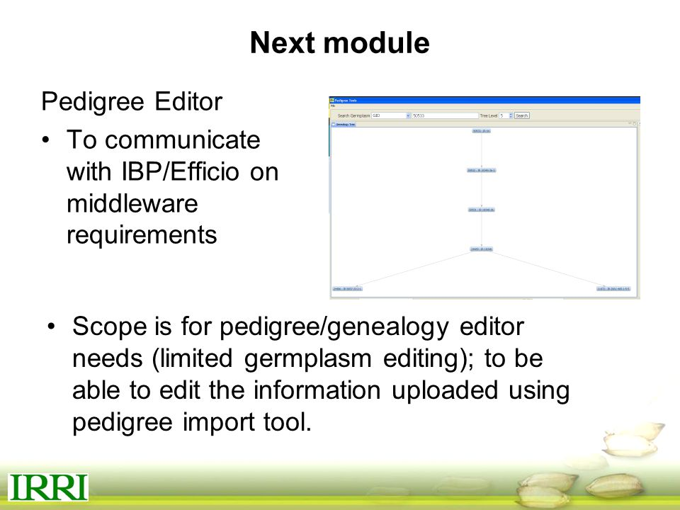Next module Pedigree Editor To communicate with IBP/Efficio on middleware requirements Scope is for pedigree/genealogy editor needs (limited germplasm editing); to be able to edit the information uploaded using pedigree import tool.