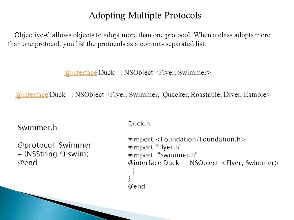 Adopting Multiple Protocols Objective-C allows objects to adopt more than one protocol.