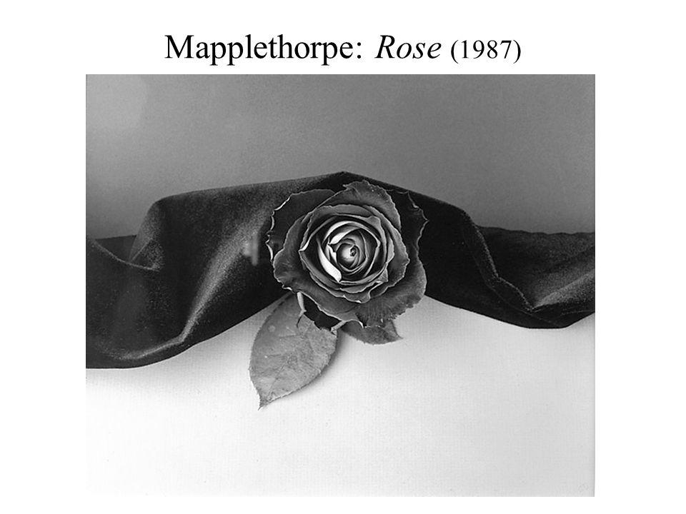 Mapplethorpe: Rose (1987)