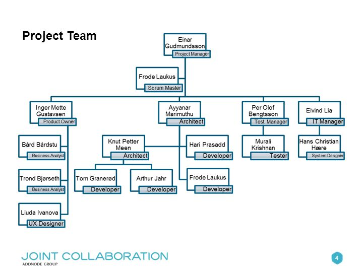 4 Project Team