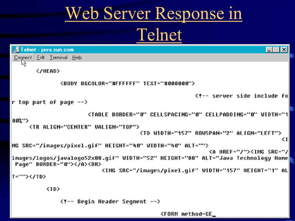 Web Server Response in Telnet